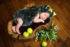Funny newborn little baby girl in a costume of hedgehog sleeping sweetly on the stump.  royalty free stock photography