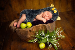 Funny newborn little baby girl in a costume of hedgehog sleeping sweetly on the stump.  stock photo