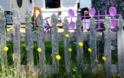 Funny old fence and dandelions. Funny old mossy fence and dandelions Royalty Free Stock Photography