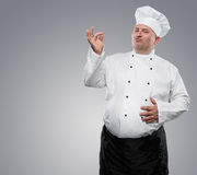Funny overweight chef. Showing ok isolated on gray background with copy space Stock Photography