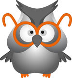 Funny owl Stock Image