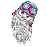Funny owl in biker helmet. Vector illustration for greeting card, poster, or print on clothes. Stock Images