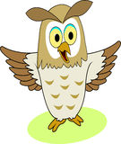 Funny owl cartoon Stock Photos