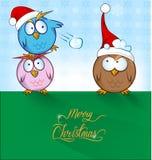 Funny owl cartoon Royalty Free Stock Photo