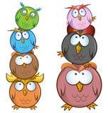 Funny Owl cartoon group. Isolated on white royalty free illustration