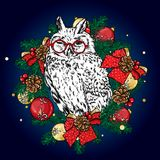 Funny owl in a Christmas wreath with balls and bows. Vector illustration. New Year`s and Christmas. Beautiful bird. Funny owl in a Christmas wreath with balls Royalty Free Stock Image