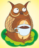Funny owl coffee drinks. Vector funny owl coffee drinks Stock Image