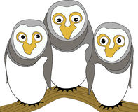Funny owl family Royalty Free Stock Photography