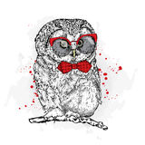 Funny owl with glasses and a tie. Vector illustration vector illustration