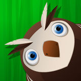 Funny owl icon Stock Images