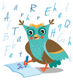 Funny Owl Learn To Write In A Notebook On A White Background. Stock Photography