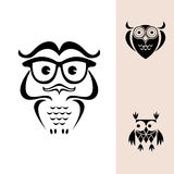 Funny owl logo. Funny owls with big eyes Stock Photo