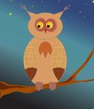 Funny owl Royalty Free Stock Photography
