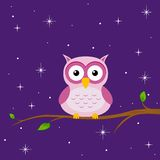 Funny owl at night Royalty Free Stock Image