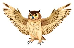 Funny owl with opened wings Stock Photography