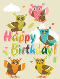 Funny owl. Owls. Vector owls. Birds. Night birds. Congratulation. Royalty Free Stock Photo