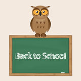 Funny owl with school board Royalty Free Stock Images