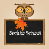 Funny owl with school board Stock Photos