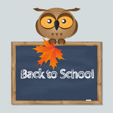 Funny owl with school board Stock Photography