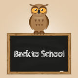 Funny owl with school board Royalty Free Stock Image