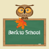 Funny owl with school board Royalty Free Stock Photo