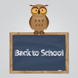 Funny owl with school board Royalty Free Stock Photography