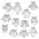Funny owl silhouettes outline with cute feathering Royalty Free Stock Image