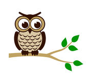 Funny owl sitting on branch Royalty Free Stock Photo
