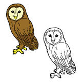 Funny owl. Vector illustration coloring page of cute cartoon owl for children and scrap book Stock Images