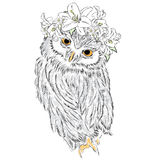 Funny owl wearing a wreath of roses and jasmine. Hipster. Bird clothing. Stock Image