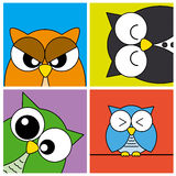 Funny Owls card Stock Photography