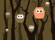 Funny owls in the forest. Royalty Free Stock Images