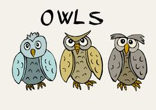 Funny owls Royalty Free Stock Images