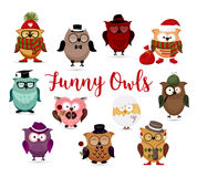 Funny owls set. Cute cartoon owls fashion costume outfits. Royalty Free Stock Images
