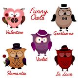 Funny owls. set for your design. Royalty Free Stock Photos