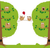 Funny owls sitting in a tree. Funny owls sitting on a tree branch stock illustration