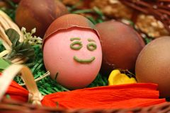 Funny painted smiling Easter egg in basket. Right view. Funny painted Easter egg in front basked with other eggs. Red ribbon Stock Photos