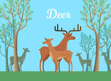 Funny Pair of Deer Illustration Stock Photo