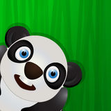 Funny panda avatar icon Stock Photo