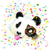 Funny Panda Bear watercolor illustration Royalty Free Stock Photography