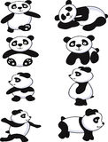 Funny panda collection Stock Photography