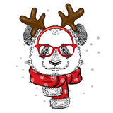 Funny panda wearing glasses and with horns. Bear in deer costume. Royalty Free Stock Photography