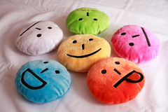 Funny pans on coloured round pillows Royalty Free Stock Photo
