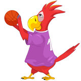 Funny Parrot. Basketball. Royalty Free Stock Images
