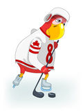 Funny Parrot. Hockey. Stock Photography