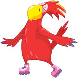 Funny Parrot. Roller. Stock Images