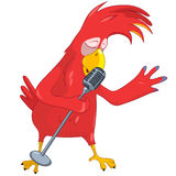 Funny Parrot Singing. Stock Images