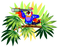 Funny parrot with telescope on palm Stock Images