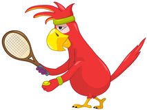Funny Parrot. Tennis. Royalty Free Stock Photo