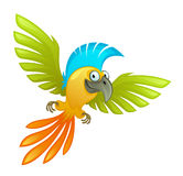 Funny parrot Royalty Free Stock Image